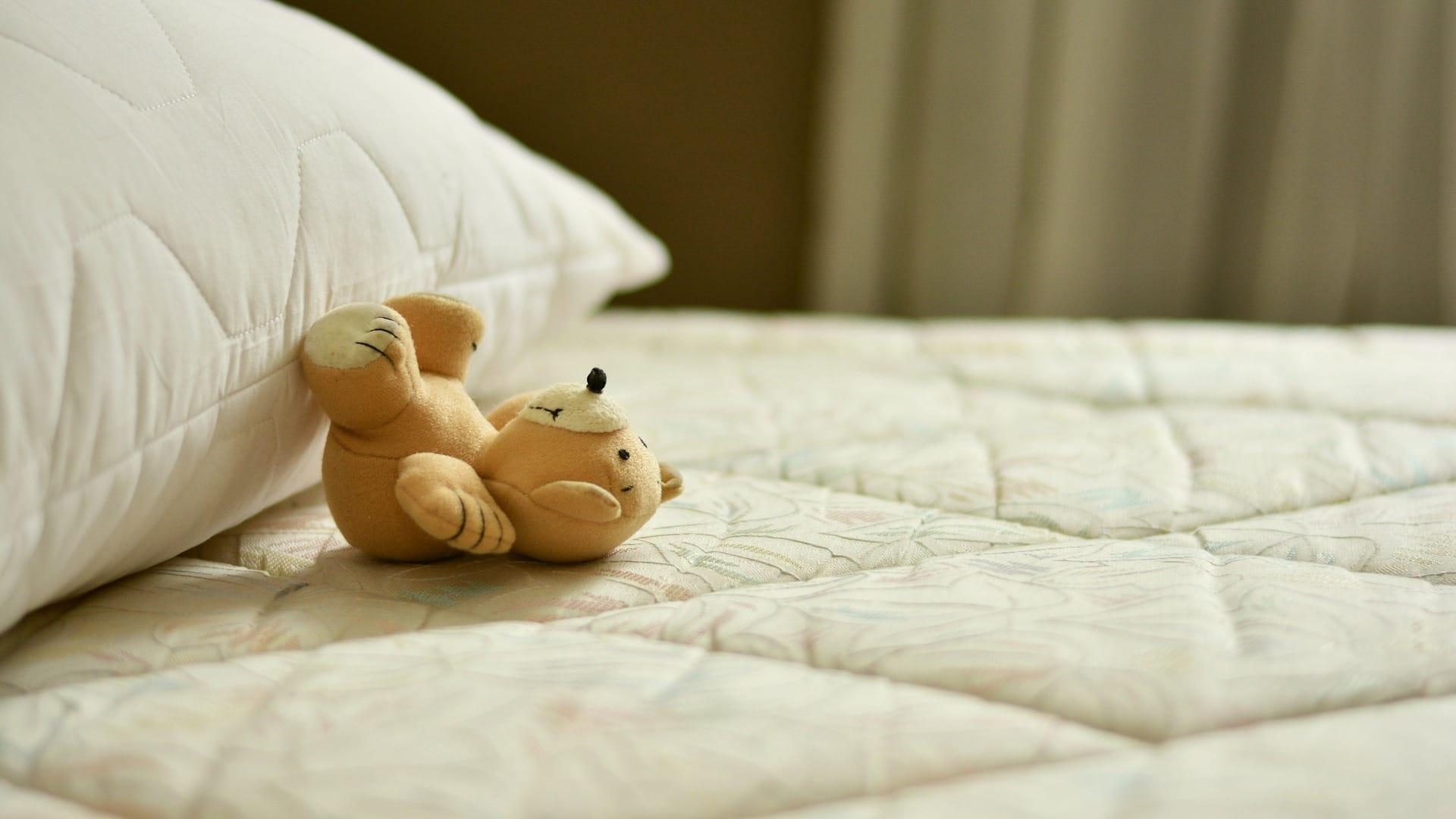 Manutenzione Materasso In Lattice i migliori 16 servizi di pulizia materassi a verona (con
