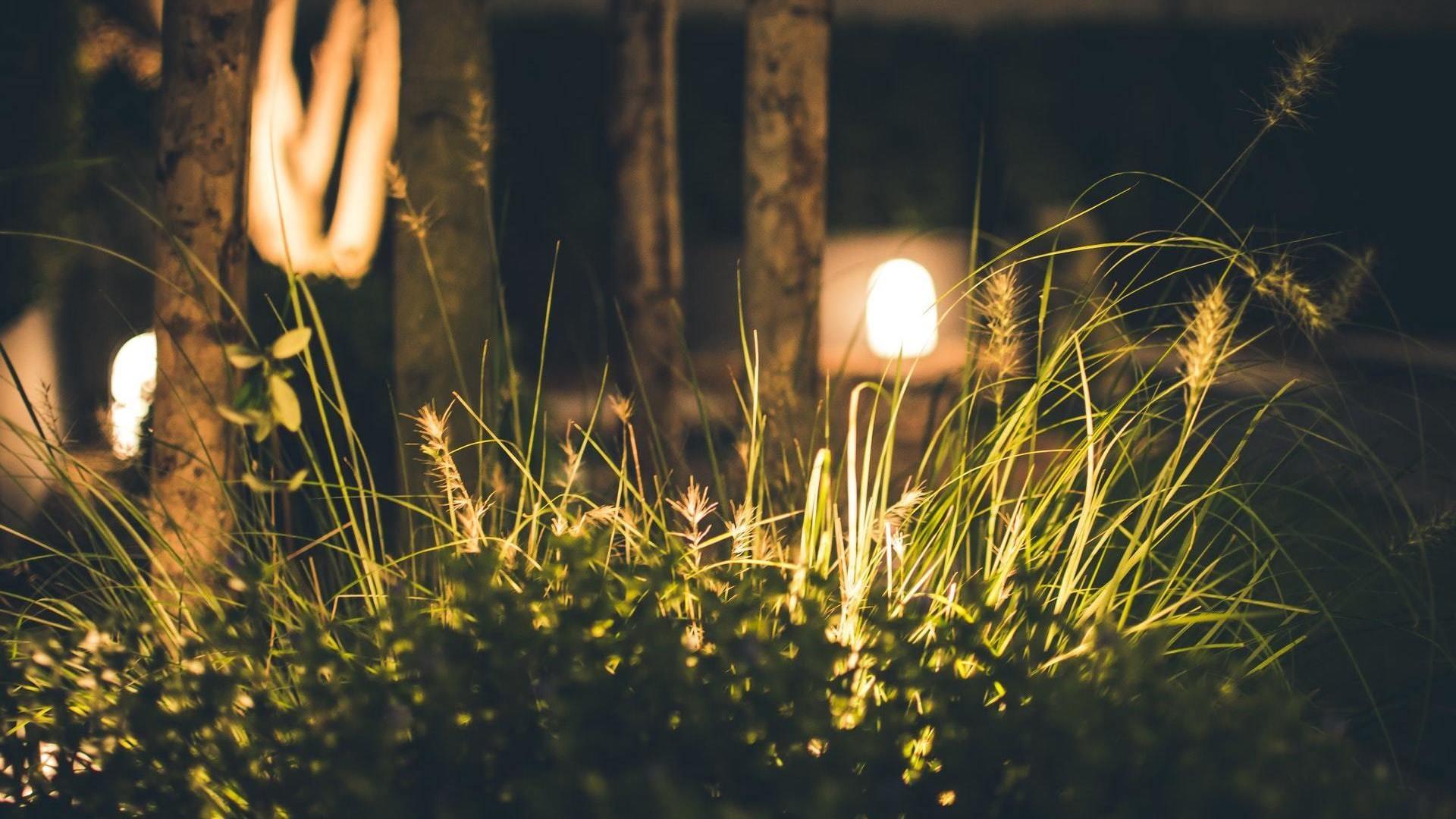 I migliori esperti in illuminazioni giardino a perugia