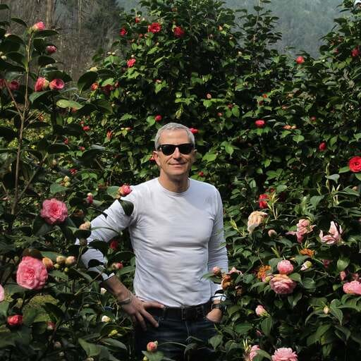 Progettare il proprio giardino - Roberto Fabiani - Progettista di Spazi Verdi a Empoli FI