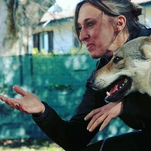 Come convivere bene con il proprio cane - Katia Verza - Addestramento e Educazione Cinofila a PAVIA