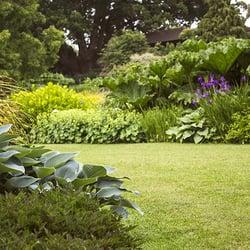 Cura giardino ed erba