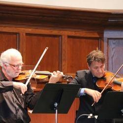 Lezioni di violino