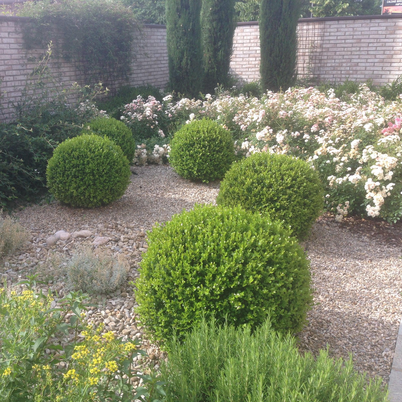 Piccoli Alberi Da Giardino i migliori 40 servizi di giardinaggio a reggio nell'emilia