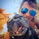 cuccioli cane - Dog sitter, pensione per cani