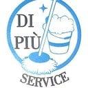 parati - IMPRESA DI PULIZIE>Di piu' service