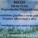 Diego Orlacchio professionista ProntoPro