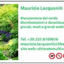 Maurizio Lacquaniti professionista ProntoPro