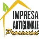 Luca Procaccini professionista ProntoPro