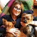 toelettatura - BABY SITTER e Dog sitter