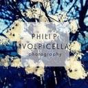 Philip Volpicella professionista ProntoPro