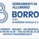 Cristian Borroni professionista ProntoPro