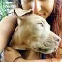 veterinaria - DOG/PET SITTER con assistenza veterinaria